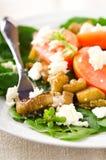 Σαλάτα μελιτζάνας με τις ντομάτες, το τυρί φέτας, το σπανάκι και τα πράσινα Στοκ Εικόνα