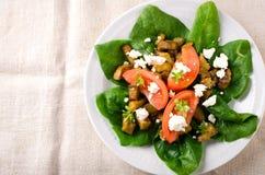 Σαλάτα μελιτζάνας με τις ντομάτες, το τυρί φέτας, το σπανάκι και τα πράσινα Στοκ φωτογραφίες με δικαίωμα ελεύθερης χρήσης