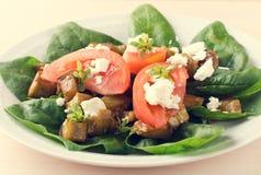 Σαλάτα μελιτζάνας με τις ντομάτες, το τυρί φέτας, το σπανάκι και τα πράσινα Στοκ Φωτογραφίες