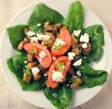 Σαλάτα μελιτζάνας με τις ντομάτες, το τυρί φέτας, το σπανάκι και τα πράσινα Στοκ εικόνα με δικαίωμα ελεύθερης χρήσης