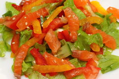 Σαλάτα με τα λαχανικά Στοκ Εικόνες