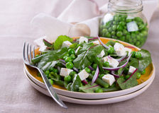 Σαλάτα με τα πράσινα μπιζέλια, τα φασόλια, το κόκκινα κρεμμύδι και το τυρί φέτας Στοκ Εικόνες