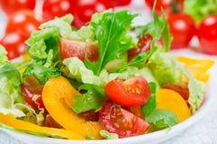 Σαλάτα με τα φρέσκα λαχανικά Στοκ φωτογραφίες με δικαίωμα ελεύθερης χρήσης