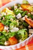 Σαλάτα με τις ντομάτες, τα ψάρια τόνου και croutons Στοκ φωτογραφίες με δικαίωμα ελεύθερης χρήσης
