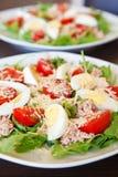 Σαλάτα με τον τόνο, τα αυγά και τα λαχανικά Στοκ Εικόνες