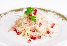 Σαλάτα με το καλαμάρι, το κρεμμύδι, το μήλο και το ρόδι Στοκ Εικόνες