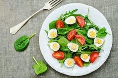 Σαλάτα με το arugula, το σπανάκι, τις ντομάτες και τα αυγά Στοκ φωτογραφία με δικαίωμα ελεύθερης χρήσης