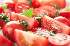 Σαλάτα ντοματών με τη σάλτσα βασιλικού Στοκ Εικόνα