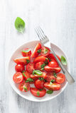 Σαλάτα ντοματών με τη σάλτσα βασιλικού Στοκ εικόνες με δικαίωμα ελεύθερης χρήσης