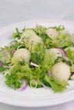 Σαλάτα πεπονιών με το arugula και το αγγούρι Στοκ Φωτογραφία