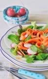 σαλάτα που βλασταίνεται στενή επάνω στο λαχανικό Φυτική σαλάτα άνοιξη στοκ φωτογραφία