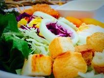 σαλάτα που βλασταίνεται στενή επάνω στο λαχανικό στοκ φωτογραφίες με δικαίωμα ελεύθερης χρήσης