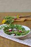 Σαλάτα που γίνεται από τα φύλλα της πικραλίδας, των σπόρων ηλίανθων και του ραδικιού Στοκ εικόνες με δικαίωμα ελεύθερης χρήσης
