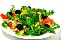 Σαλάτα σε ένα πιάτο Στοκ φωτογραφία με δικαίωμα ελεύθερης χρήσης