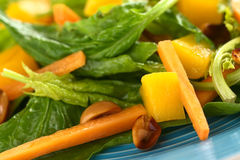 Σαλάτα σπανακιού, μάγκο και καρότων Στοκ Φωτογραφίες