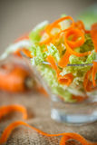 Σαλάτα του φρέσκων τεμαχισμένων λάχανου και των καρότων Στοκ Φωτογραφία