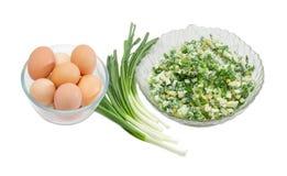 Σαλάτα των πράσινων κρεμμυδιών με τα βρασμένα αυγά, των scallions και των αυγών Στοκ Φωτογραφία
