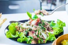 Σαλάτα τόνου με τις φρέσκα ντομάτες και τα χορτάρια Στοκ εικόνες με δικαίωμα ελεύθερης χρήσης