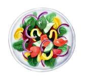 Σαλάτα φρέσκων λαχανικών, απεικόνιση watercolor Στοκ Εικόνες