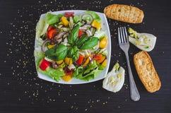 Σαλάτα φρέσκων λαχανικών με τα ψωμιά και το μάραθο Στοκ Εικόνα