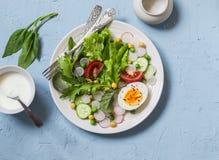 Σαλάτα φρέσκων λαχανικών με τις ντομάτες, το ραδίκι, τα πράσινα χορτάρια και το βρασμένο αυγό σε ένα ανοικτό μπλε υπόβαθρο πετρών Στοκ φωτογραφία με δικαίωμα ελεύθερης χρήσης