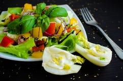 Σαλάτα φρέσκων λαχανικών με το μάραθο Στοκ φωτογραφίες με δικαίωμα ελεύθερης χρήσης
