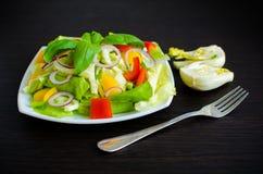 Σαλάτα φρέσκων λαχανικών με το μάραθο Στοκ Εικόνες
