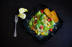 Σαλάτα φρέσκων λαχανικών με το ψωμί και το μάραθο Στοκ εικόνα με δικαίωμα ελεύθερης χρήσης