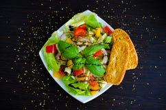 Σαλάτα φρέσκων λαχανικών με το ψωμί Στοκ Εικόνα