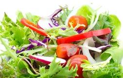 Σαλάτα φρέσκων λαχανικών που απομονώνεται στο λευκό Στοκ εικόνα με δικαίωμα ελεύθερης χρήσης
