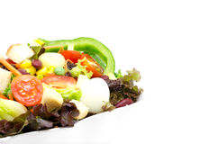 Σαλάτα φρέσκων λαχανικών στο λευκό Στοκ φωτογραφίες με δικαίωμα ελεύθερης χρήσης