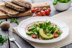 Σαλάτα Avocadon Στοκ Εικόνα