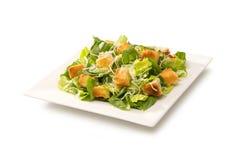 Σαλάτα Caesar σε ένα άσπρο πιάτο Στοκ Φωτογραφία