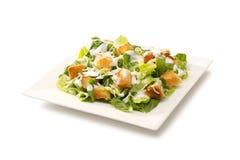 Σαλάτα Caesar σε ένα άσπρο πιάτο Στοκ Εικόνες