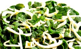 Ακατέργαστα, vegan τρόφιμα: σαλάτα σπανακιού, μαράθου και μεντών Στοκ φωτογραφία με δικαίωμα ελεύθερης χρήσης