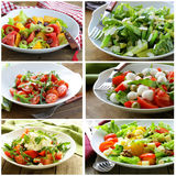 Σαλάτες επιλογών κολάζ με τα λαχανικά, τυρί Στοκ Εικόνα