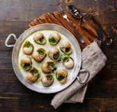 Σαλιγκάρια Escargot Bourgogne με το βούτυρο χορταριών σκόρδου στοκ εικόνα με δικαίωμα ελεύθερης χρήσης