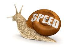 Σαλιγκάρι ταχύτητας (πορεία ψαλιδίσματος συμπεριλαμβανόμενη) απεικόνιση αποθεμάτων