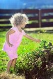 σγουρό χαριτωμένο τρίχωμα κοριτσιών λουλουδιών λίγη επιλογή Στοκ φωτογραφίες με δικαίωμα ελεύθερης χρήσης