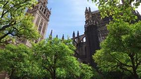 Σεβίλη, Ανδαλουσία, Ισπανία - 18 Απριλίου 2016: Καθεδρικός ναός των κήπων της Σεβίλης απόθεμα βίντεο