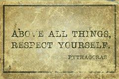Σεβασμός εσείς Pyth Στοκ εικόνες με δικαίωμα ελεύθερης χρήσης