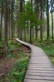 Σειρά από μαδέρια μέσω του προστατευμένου δάσους Στοκ φωτογραφία με δικαίωμα ελεύθερης χρήσης