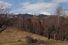 Σειρά βουνών και δασική του χωριού σκηνή Στοκ Φωτογραφία