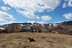 Σειρά βουνών και δασική του χωριού σκηνή Στοκ εικόνες με δικαίωμα ελεύθερης χρήσης