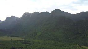 Σειρά βουνών που καλύπτεται με το πράσινο παχύ τροπικό δάσος απόθεμα βίντεο