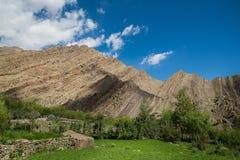 Σειρά βουνών σε Leh Ladakh Θαμπάδα στο πρώτο πλάνο Στοκ Φωτογραφία