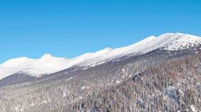 Σειρά βουνών στο χιόνι ενάντια στο μπλε ουρανό Σιβηρία, Ρωσία στοκ εικόνες