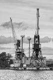 Σειρά βρυσών κατά μήκος της λιμενικής ακτής Στοκ Εικόνα