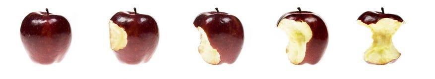 σειρά μήλων Στοκ Εικόνες
