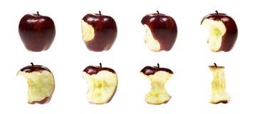 σειρά μήλων Στοκ εικόνα με δικαίωμα ελεύθερης χρήσης